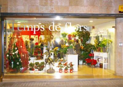 Disseny de floristeria